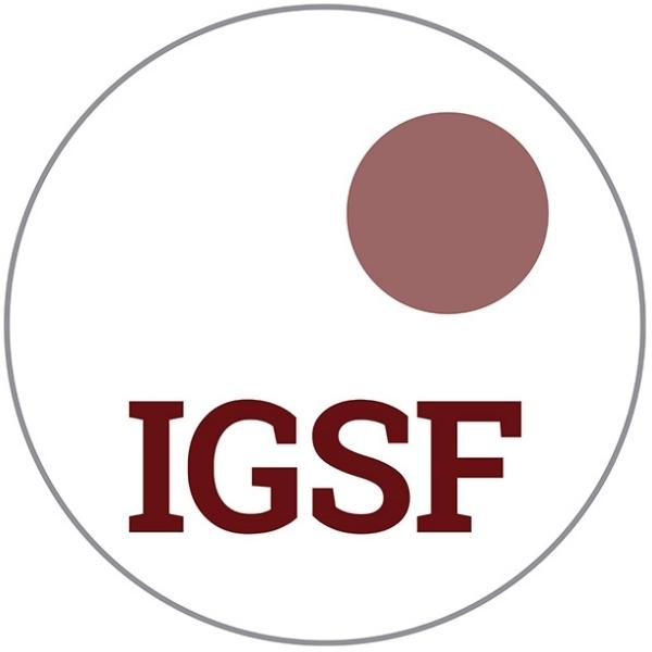 IGSF Interdisziplinäre Gesellschaft für Sozialtechnologie und Forschung
